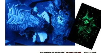 step By step : diorama Alien et Predator grandeur nature