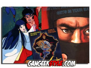 Dossier spécial Ninja Game