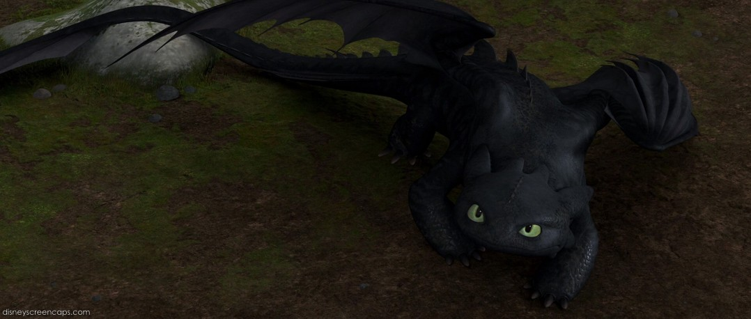 how_to_train_your_dragon_screencap___toothless_by_mr_lord_shen_fan_2k9-d5js6ro