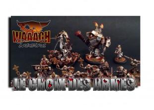 Menoth : the Protectorate de GGS et de la Waaagh