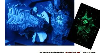 step By step : diorama Alien et Predator grandeur nature
